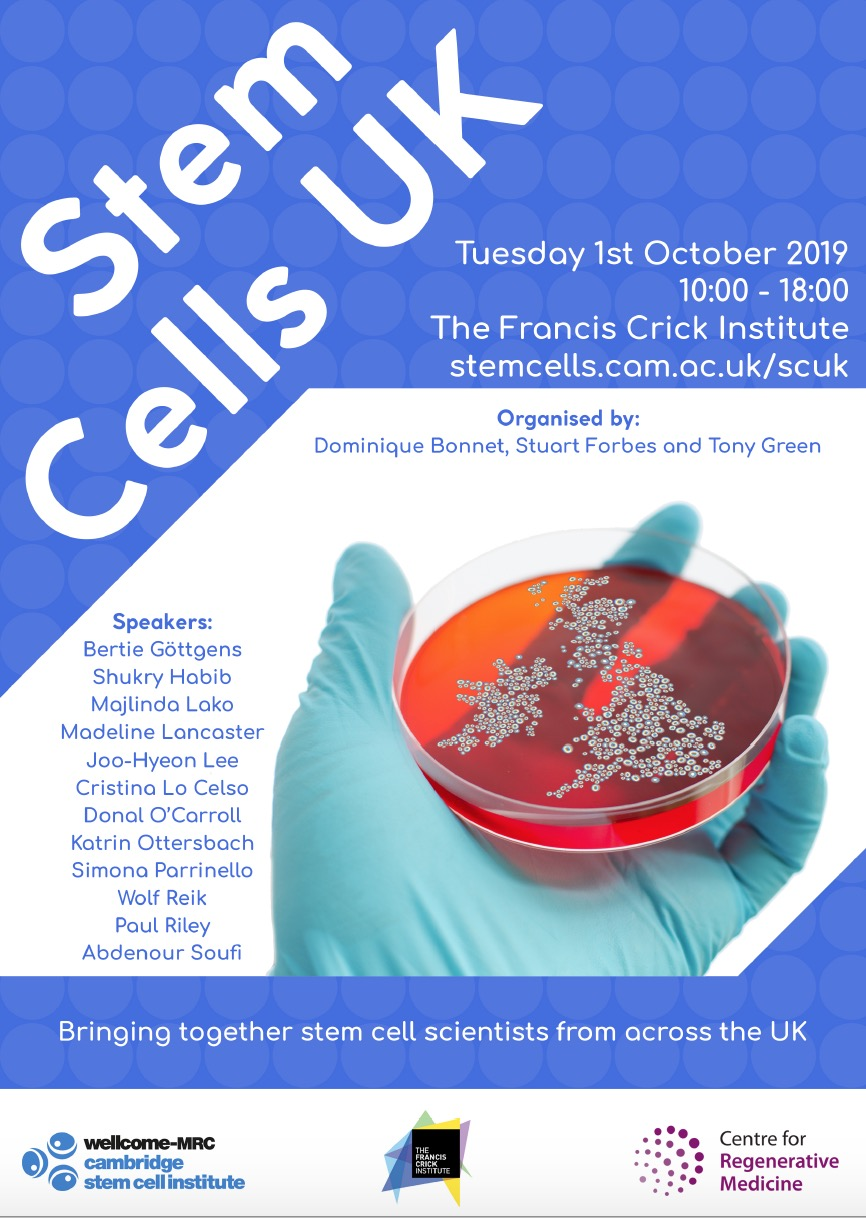 Stem Cells UK
