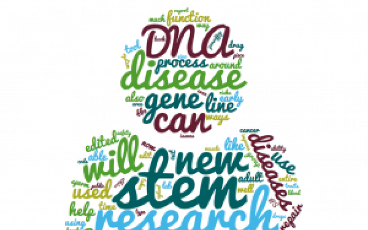 Word cloud about genome editing