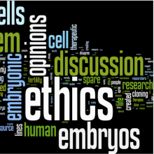 Origins, ethics and embryos: the sources of human embryonic stem cells