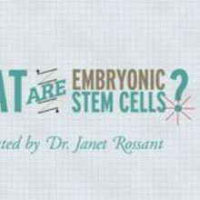 StemCellShorts - What are embryonic stem cells?