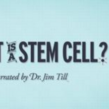 StemCellShorts - What is a stem cell?