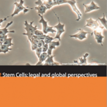 Activities Exploring the Regulation of Stem Cell Research