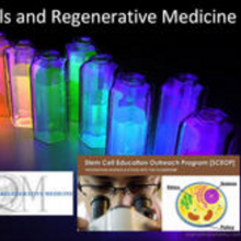 Stem Cell & Regenerative Medicine Powerpoint